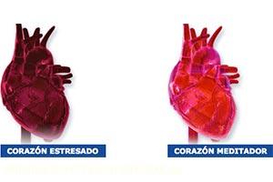 Prevención de enfermedades cardiovasculares con la Meditación Trascendental
